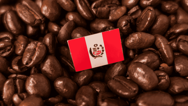 Peruvian Coffee – What Is So Special About It?